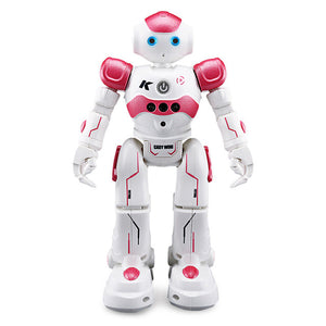 Intelligent Robot Toy for Kids