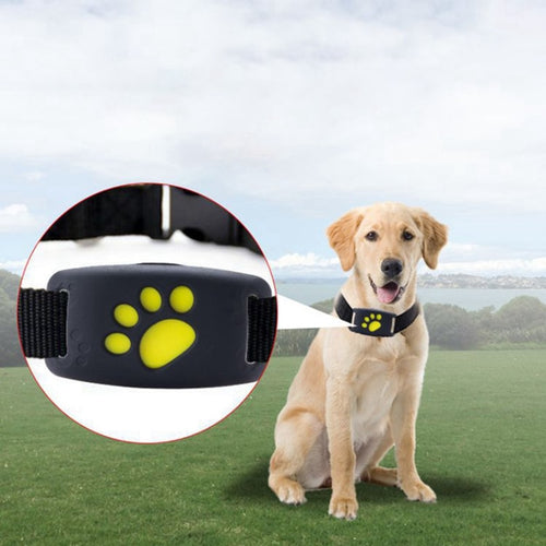 GPS Tracker Pet Collar 9 (2G Sim Card)