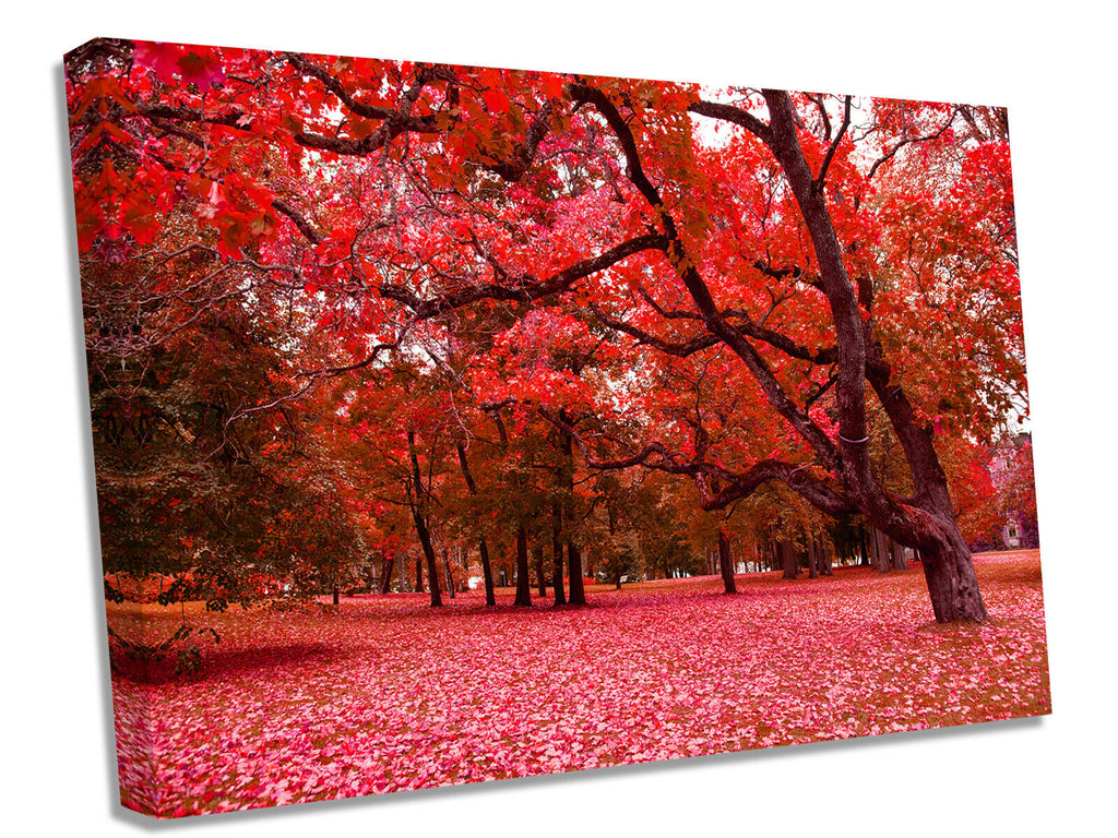 Red fushcia trees forest Canvas Wall Art Picture Print