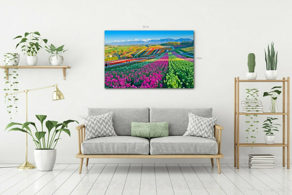 Rainbow Colour  Flower Gardens Canvas Wall Art Picture Print