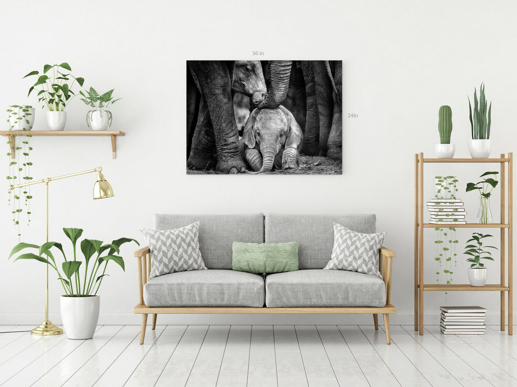 Baby Elephant Mother's Touch Canvas Wall Art Picture Print