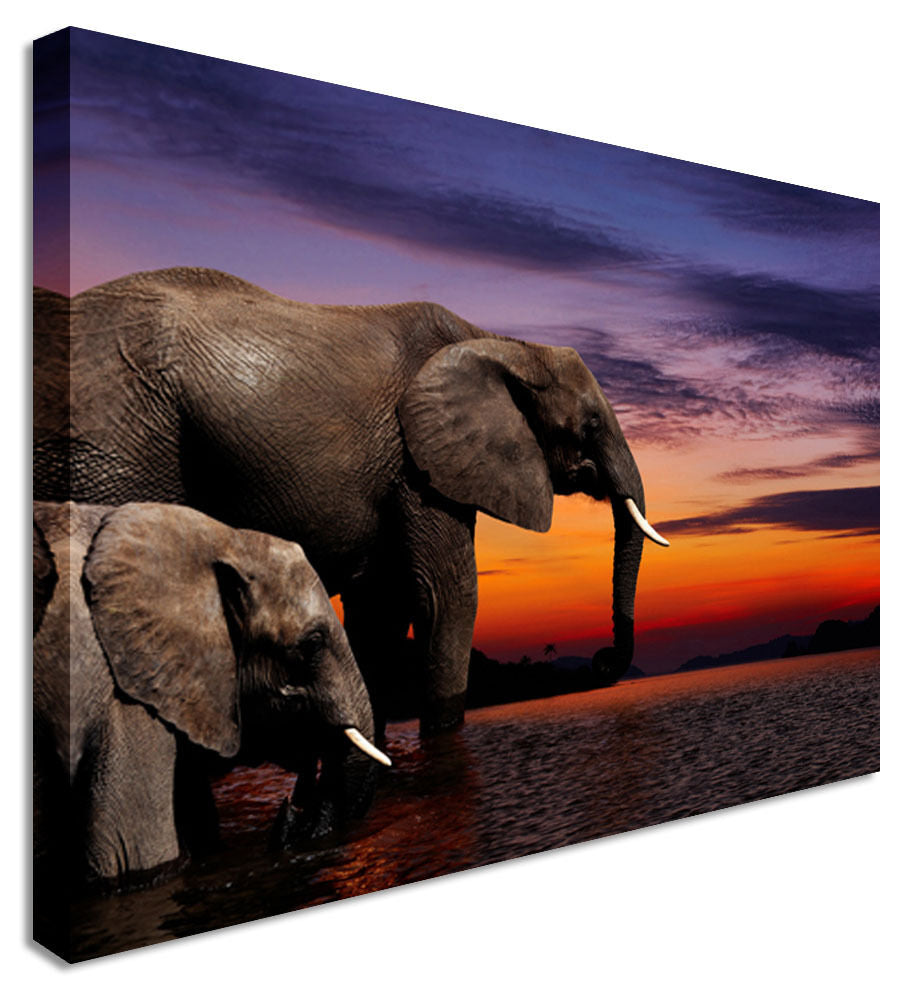 Elephant Mother Canvas Wall Art Picture Print