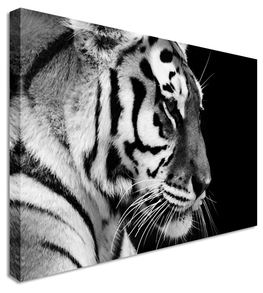 Animal Thinking Tiger Canvas Wall Art Picture Print