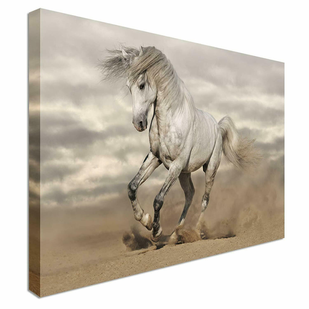 Galloping White Stallion Canvas Wall Art Picture Print