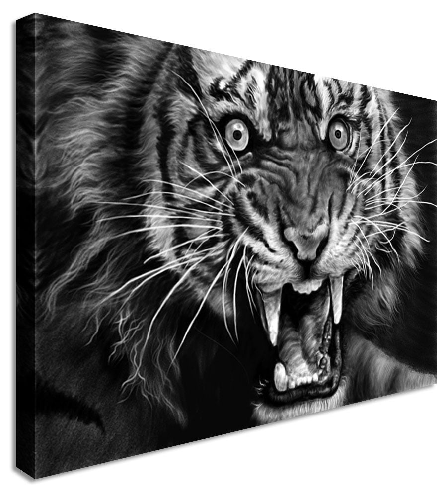 Animal Rage Tiger Canvas Wall Art Picture Print
