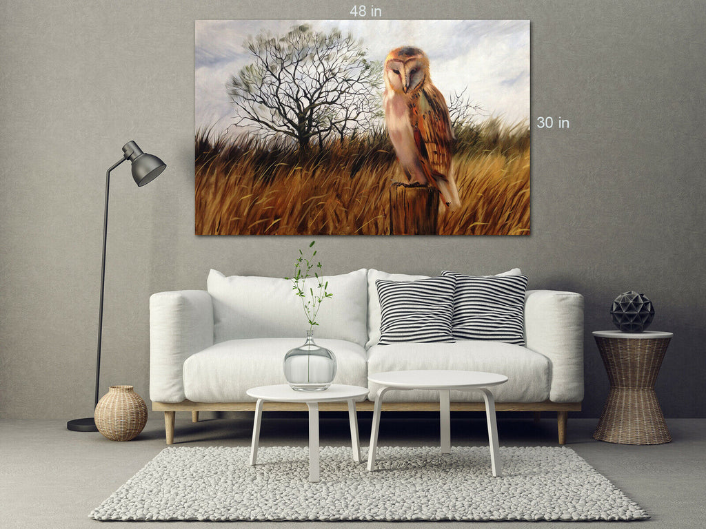 Mister Owl Looking Canvas Wall Art Picture Print