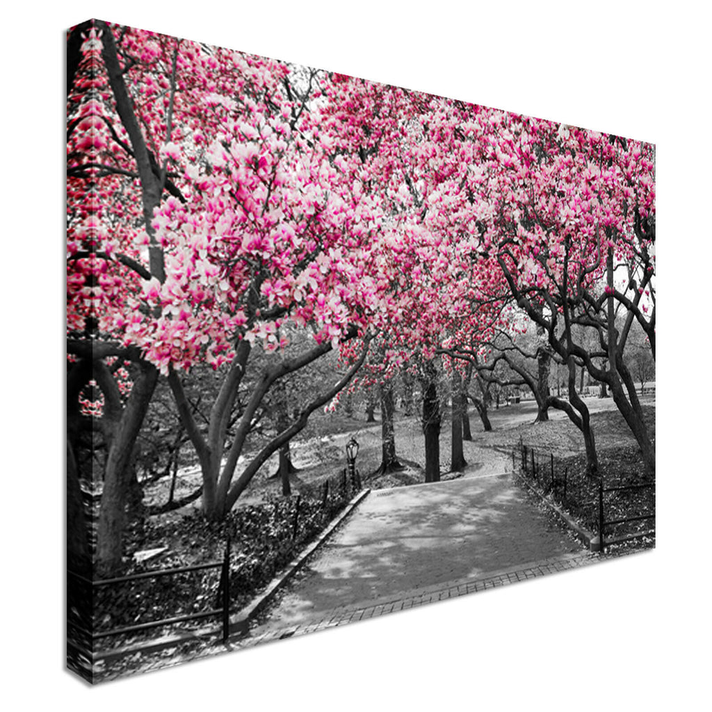 Pink Blossoms Park Wall Art Canvas Wall Art Picture Print
