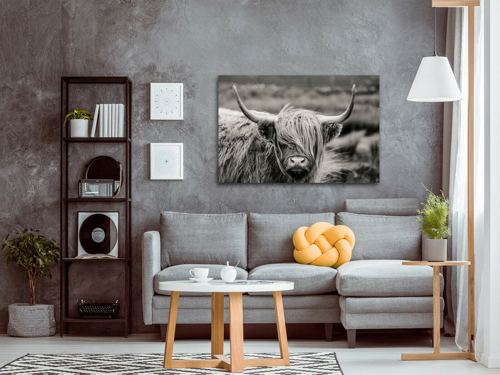 Scottish Highland Cattle Canvas Wall Art Picture Print
