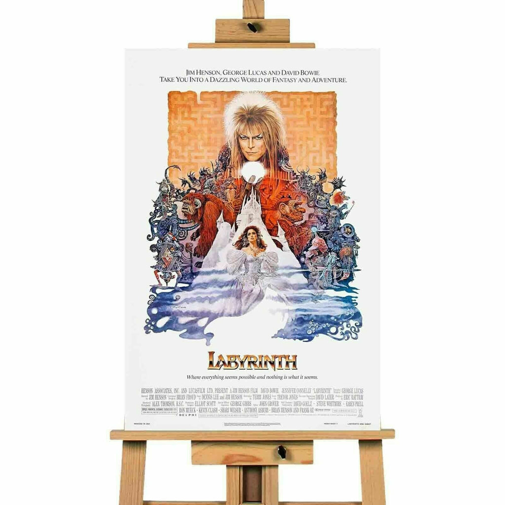 The Labyrinth Movie Canvas  Print Wall Art