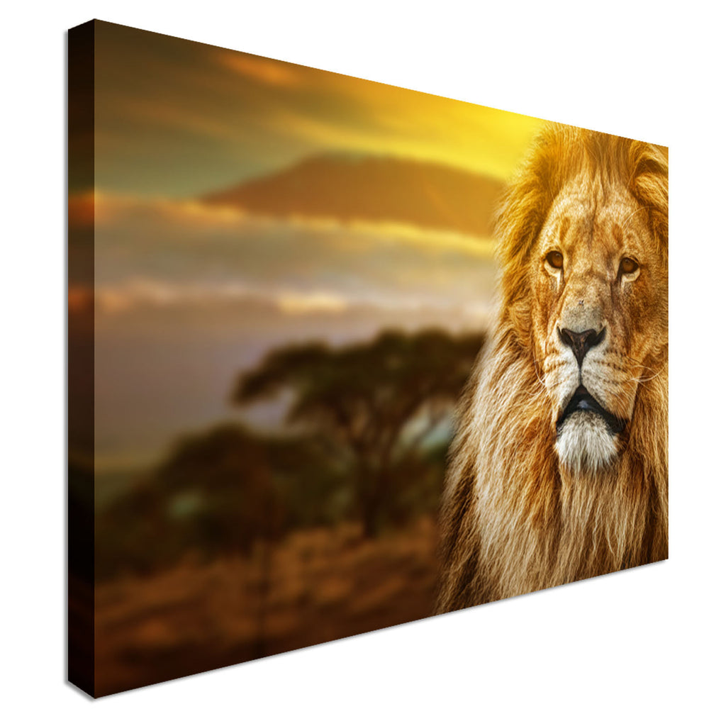 Proud Lion Canvas Wall Art Picture Print