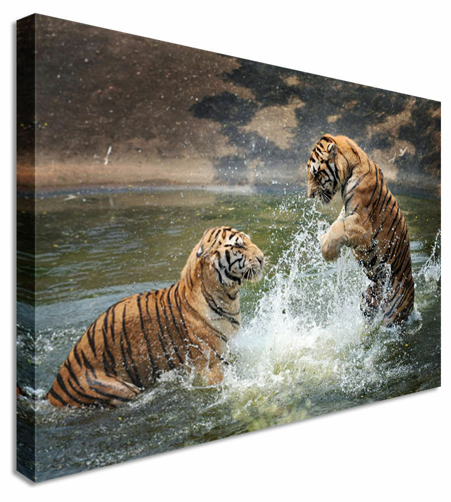 Canvas Tiger Fight Canvas Wall Art Picture Print