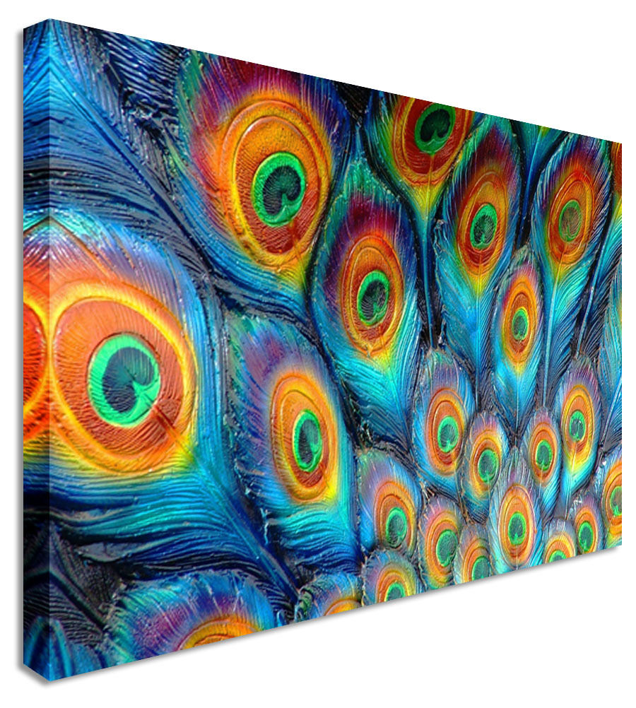 Wall Art Large Animal Peacock Tail  Canvas Wall Art Picture Print
