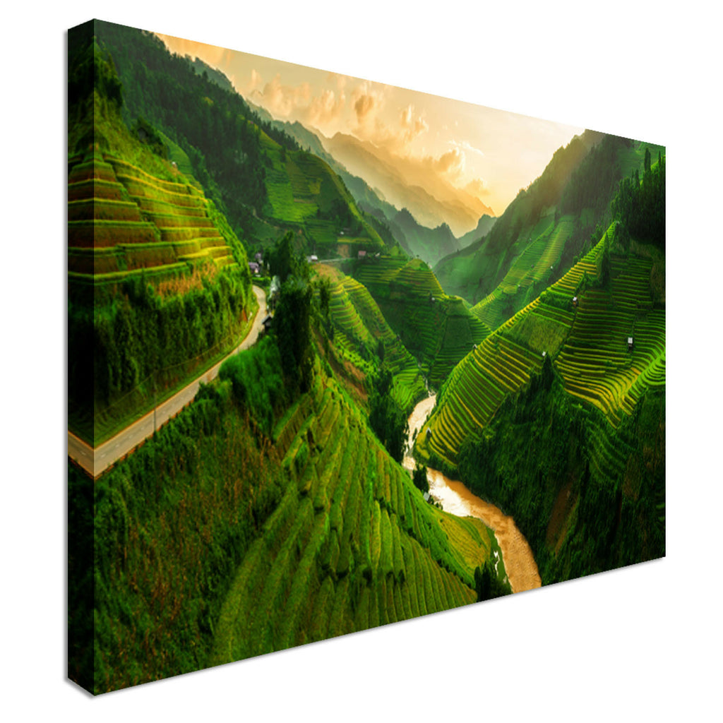 Vietnam Rice Field Canvas Wall Art Picture Print