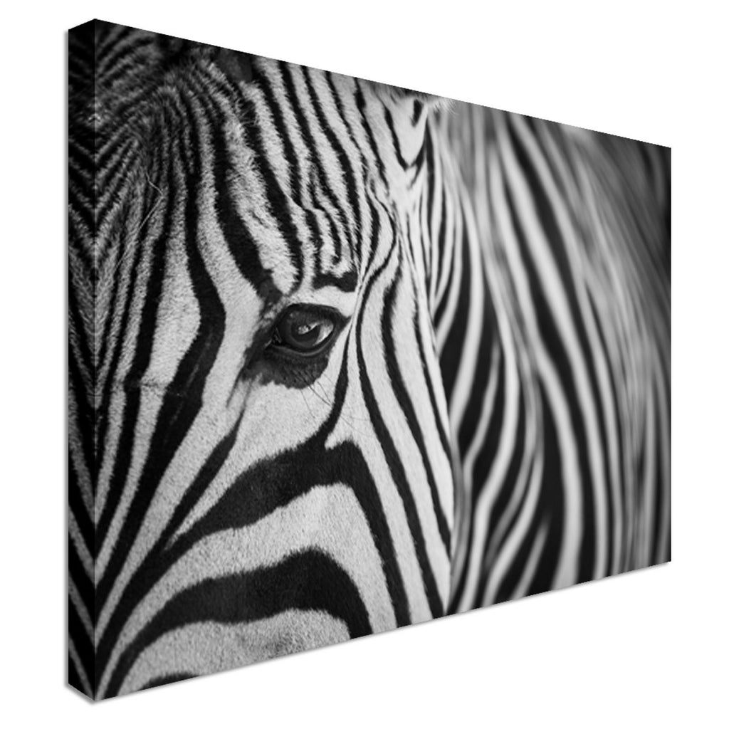 Zebra Head Close Up Canvas Wall Art Picture Print