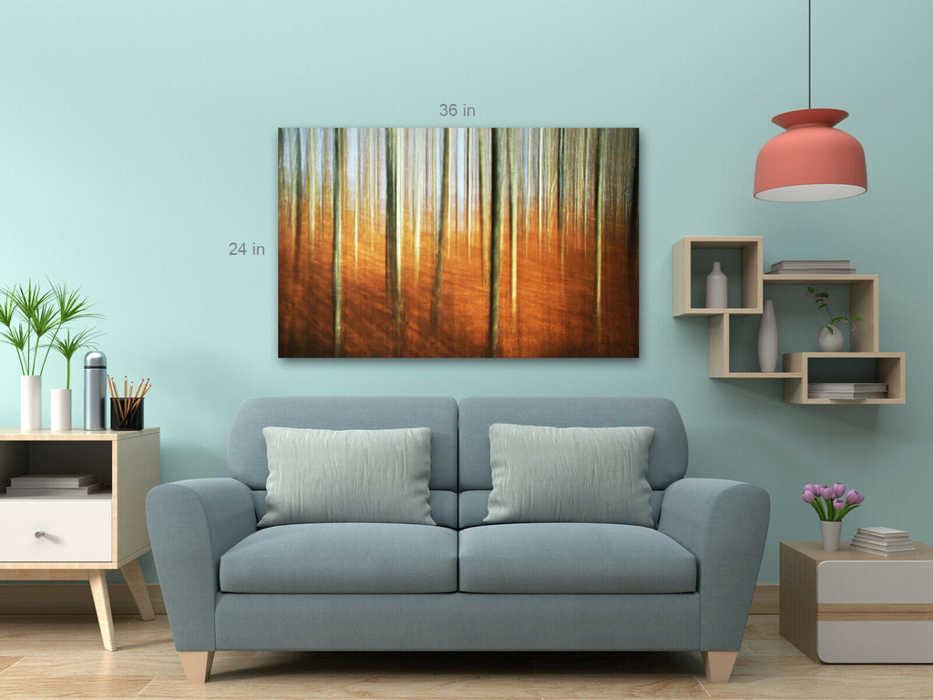 Autumn Forest Nice Colours Canvas Wall Art Picture Print