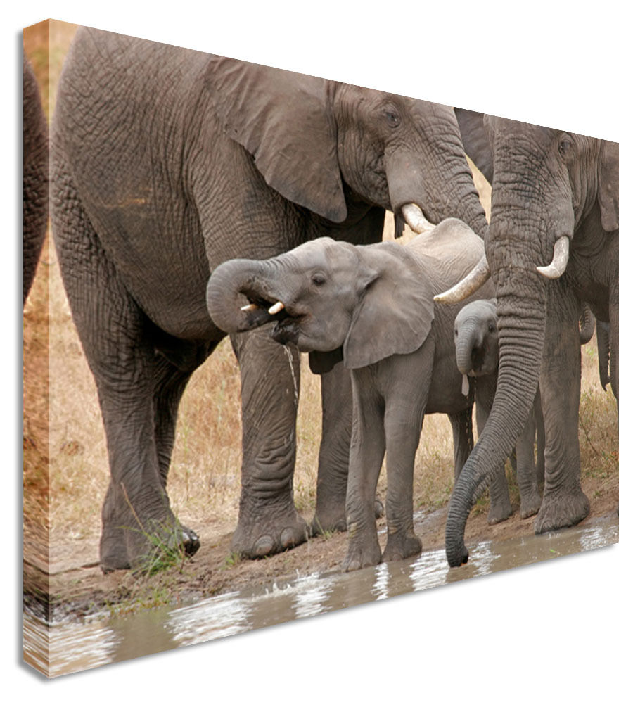 Elephant Baby Shower - Canvas Wall Art Picture Print