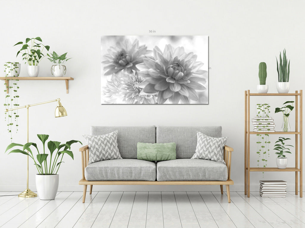 Flower Black and White Dahlia Dahlia Canvas Wall Art Picture Print