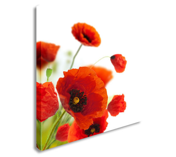 Red Poppies Canvas Wall Art Picture Print