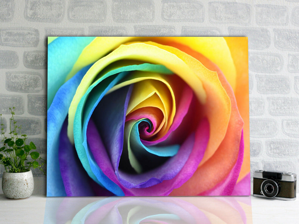 Rainbow rose bright Canvas Wall Art Picture Print