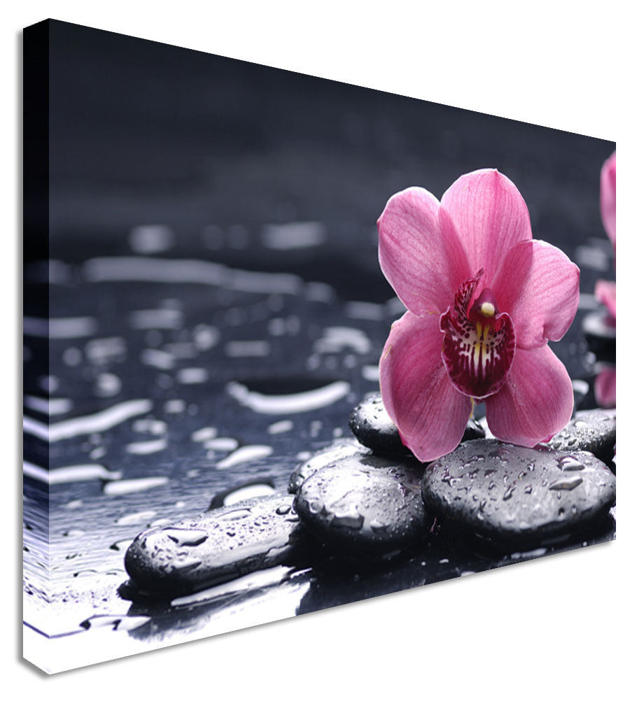 Pink Orchid Floral Flower  Canvas Wall Art Picture Print