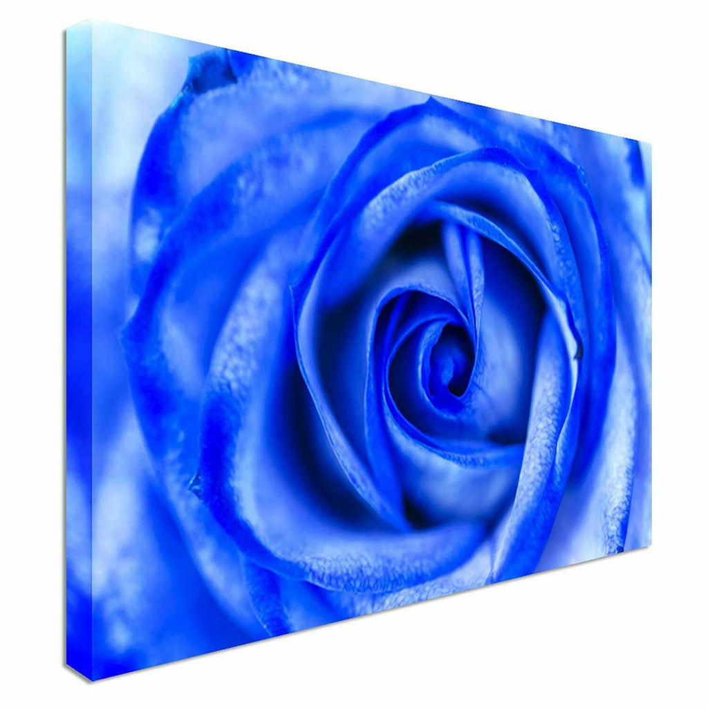 Close up rose petals Canvas Wall Art Picture Print