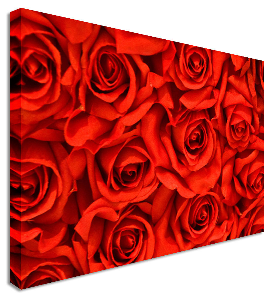 Rose Petal Bed Canvas Wall Art Picture Print