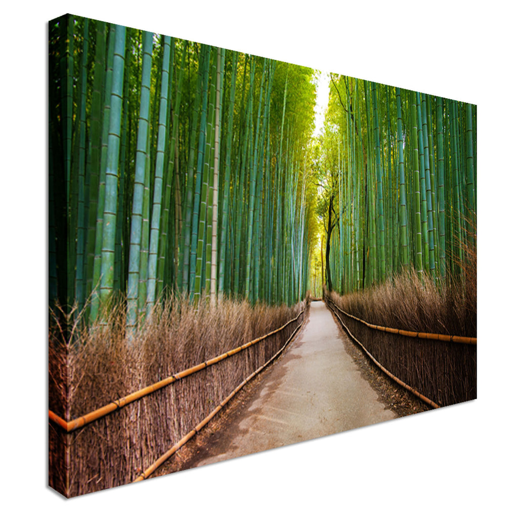 Bamboo Forest in Japan Canvas Canvas Wall Art Picture Print