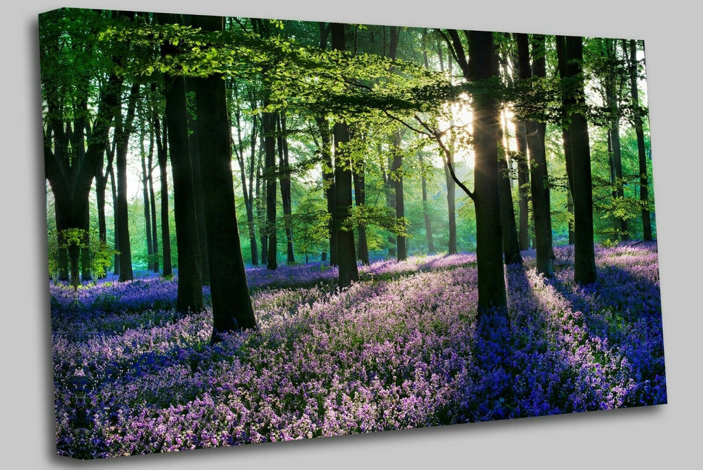 Violet Forest Flowers Field Canvas Wall Art Picture Print
