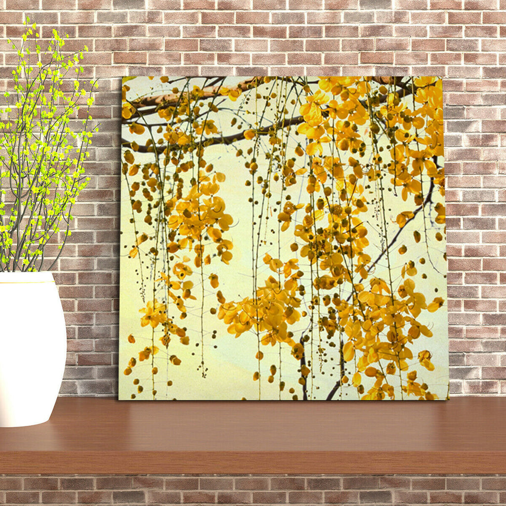 Golden Shower National tree of Thailand Tree Canvas Wall Art Picture Print