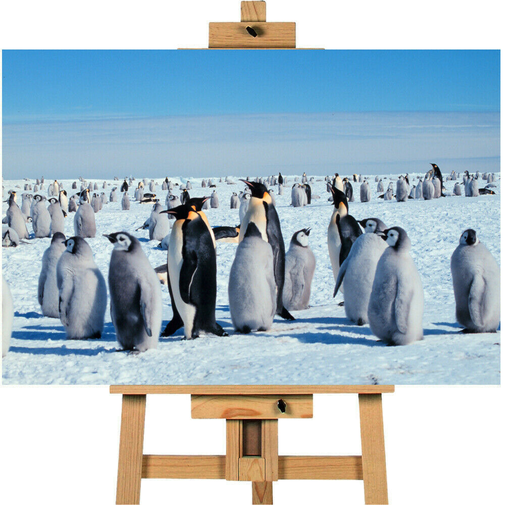 Modern Art Canvas Emperor Penguins Wall Art Print