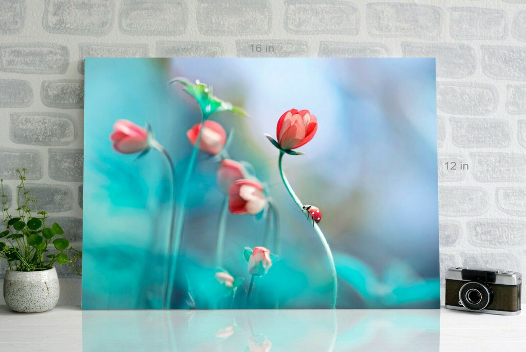 Abstract flower painting Canvas Wall Art Picture Print