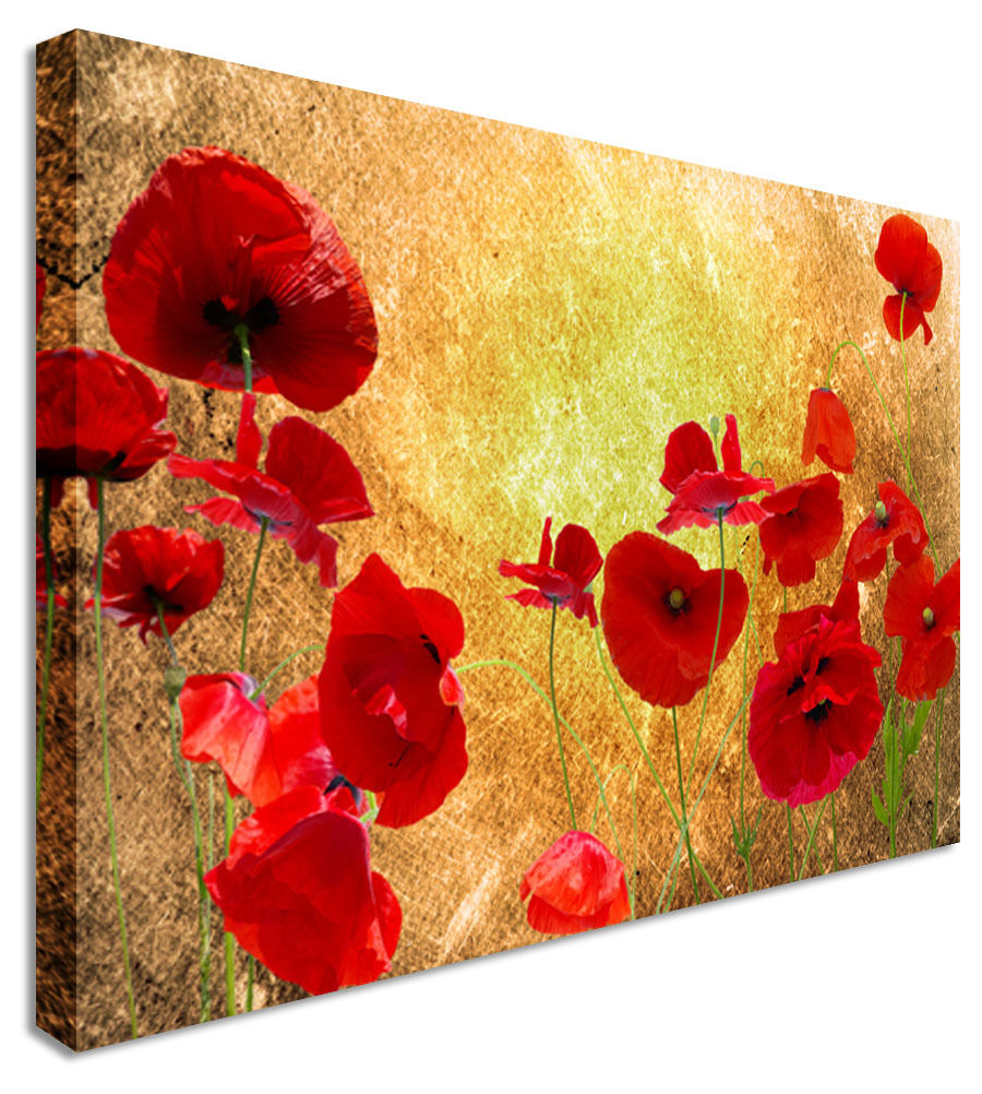 Vintage Brown Poppy Picture Field - Canvas Wall Art Picture Print