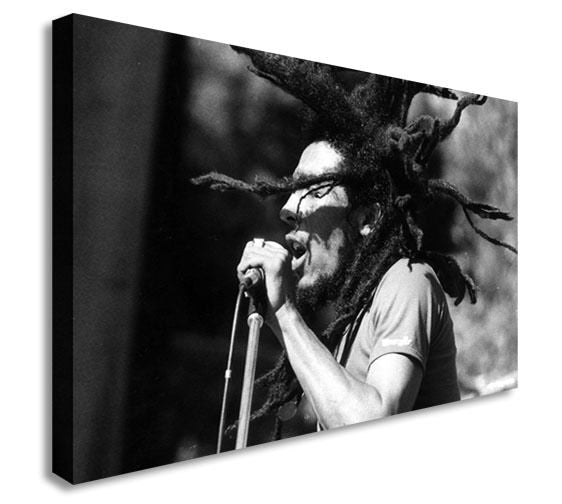 Panoramic Bob Marley Dreadlocks 40x20inches Canvas Wall Art Picture Print