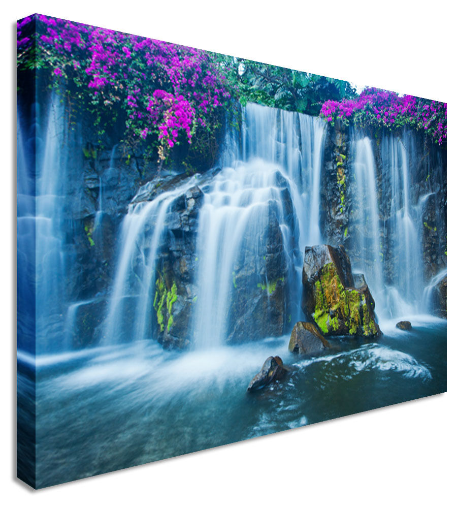 Picture Purple Blossom On Waterfall Canvas Wall Art Picture Print