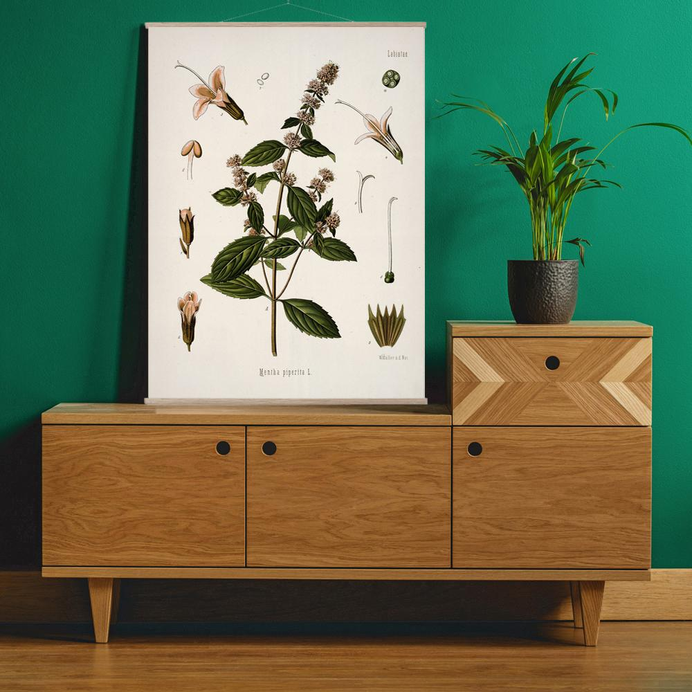 Vintage Botanical Peppermint Art Print