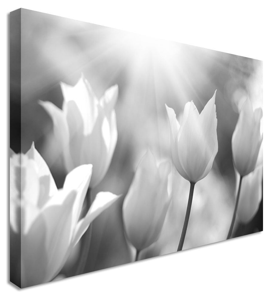 Tulips Salute The Sunrise Canvas Wall Art Picture Print