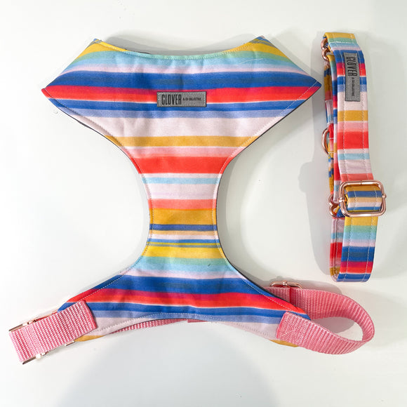 'Candy Stripes' Chest Harness