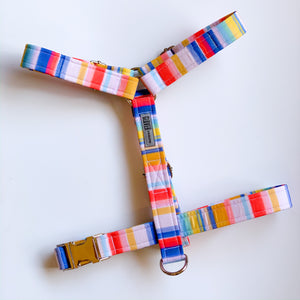 'Candy Stripe' H Strap Harness