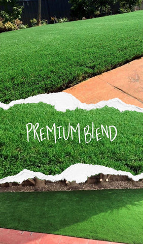 Native Blend 19,000 TFT high density synthetic grass only available at Ausgrass.  Australian standardized American made yarn which has been designed to create an incredibly natural looking synthetic turf. All Ausgrass synthetic grasses are of the highest density giving them a softer and more natural feel while staying cooler in the sun.  Made with only the highest quality materials Ausgrass synthetic grass is 100% lead free and contains zero harmful chemicals, making it completely child and pet friendly.   With 10 years UV protection warranty and 30 years lifetime warranty, you can't go wrong with Ausgrass.