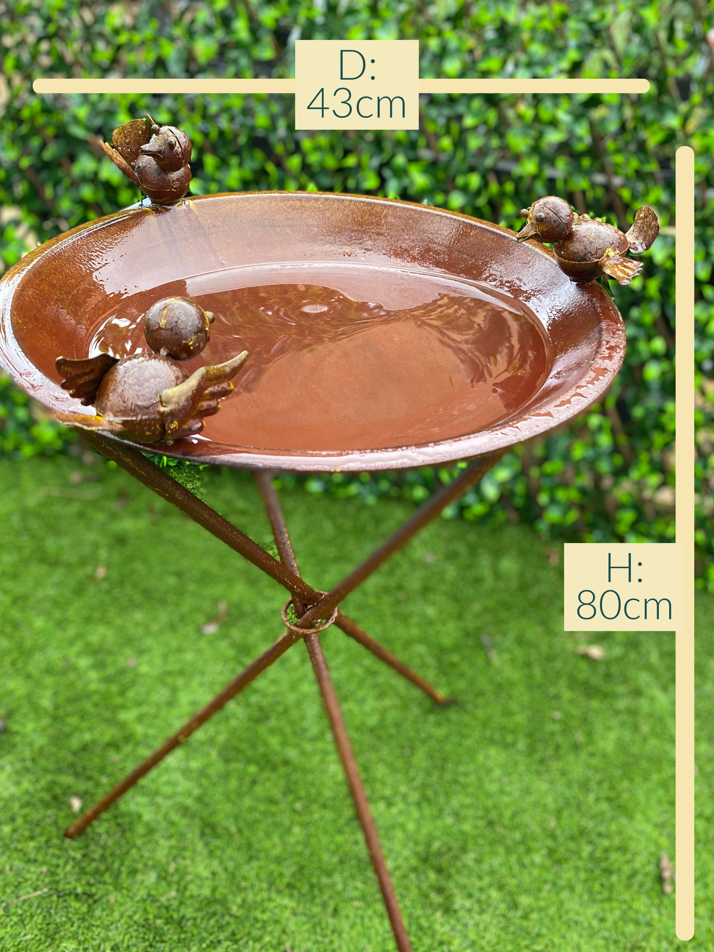 Rustic bird bath- playful birds