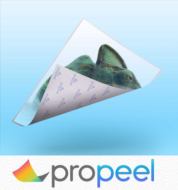 Propeel Waterslide 1-Step for Hard Surfaces