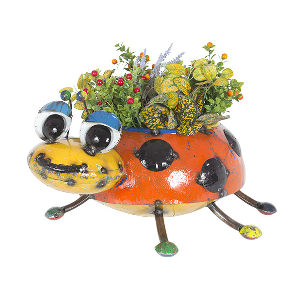 Lilly the Ladybug Planter