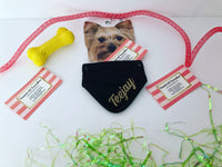 Personalized Pet Bandana With Name
