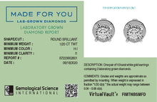 Load image into Gallery viewer, Made for You 10K White Gold 1/20 cttw Lab-Grown Diamond Earrings