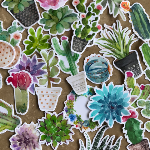Watercolor Cactus Stickers