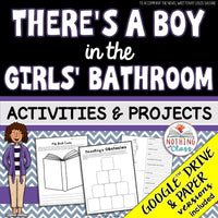 There's a Boy in the Girls' Bathroom: Activities and Projects