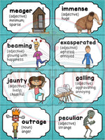 Tuck Everlasting: Comprehension and Vocabulary