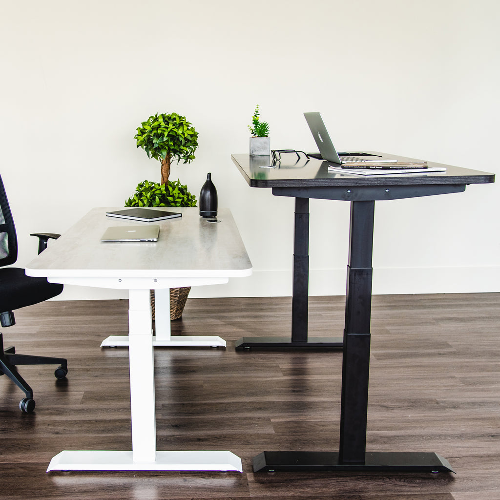 Motion Series - Standing Desk Frame