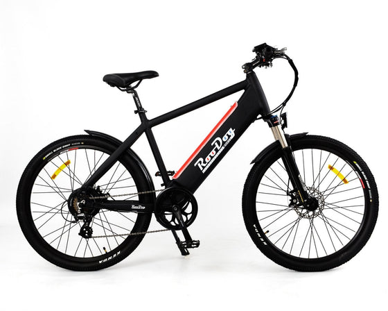 RooDog Avatar Electric Bike