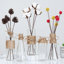 Load image into Gallery viewer, Creative Nordic Glass Vases
